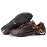 Womens Puma Future Cat In Chocolate/Brown Outlet