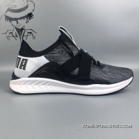 New Release 1801-2Puma New IGNITE EvoKNIT Sport Running Shoes
