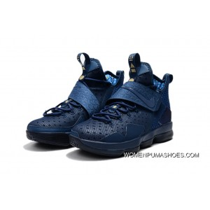 626aa3f8019e3 ... Nike Lebron 14 Philippines Blue Men For Sale ...
